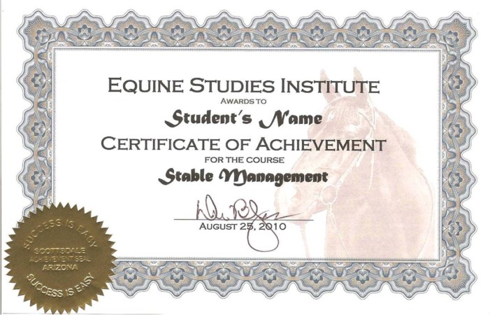 Equine Studies subjects in college to study